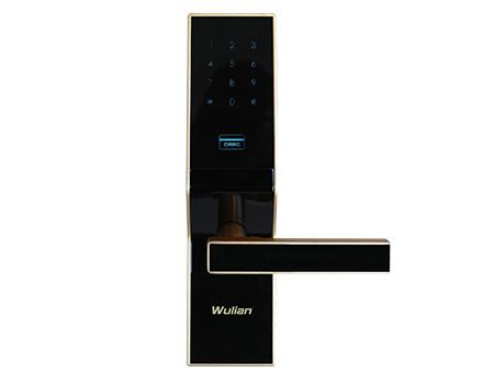 Wulian密码卡锁